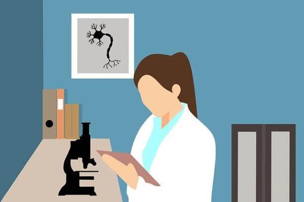 Organizacion y estructura de los experimentos - Método Científico