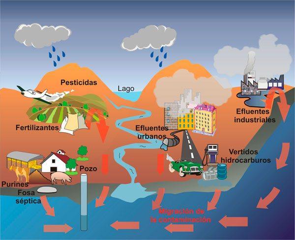 Efectos biologicos - Contaminación atmosférica